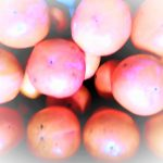 引き寄せ「柿」バージョン