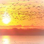 宇宙パワーと共鳴する☆【天秤座・満月】4月11日(火)~西洋占星術~