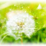 【受付9月30日まで!】西洋占星術体験セミナー