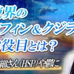 【繊細さん(HSP)や鬱に】天使界の高次元ドルフィン&クジラのお役目とは?ワンネス浄化&ヒーリング! | 大阪 東京の講座、スクール